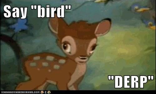 "Say ""bird""  ""DERP"""