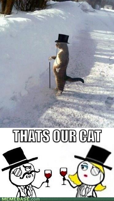 i should buy a boat sir Cats - 7119547904