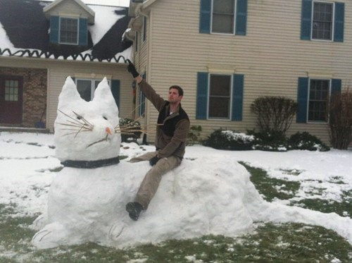 snow,winter,snow sculpture,Cats