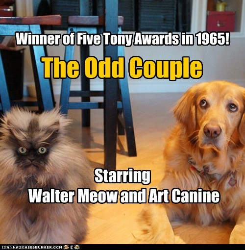 The Odd Couple Starring Walter Meow and Art Canine Winner of Five Tony Awards in 1965!