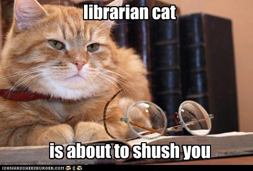 Not Funny Cat Meme : Librarian cat does not tolerate your casual conversations