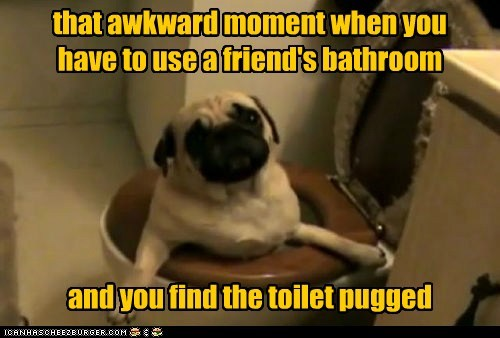 that awkward moment when you have to use a friend's bathroom and you find the toilet pugged