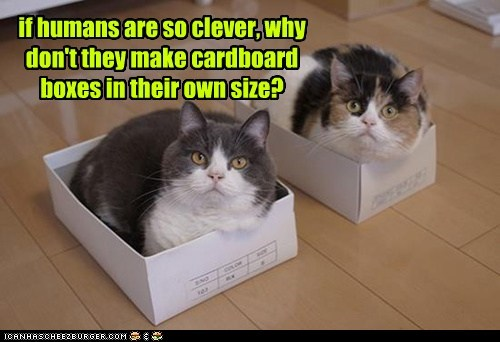 if humans are so clever, why don't they make cardboard boxes in their own size?
