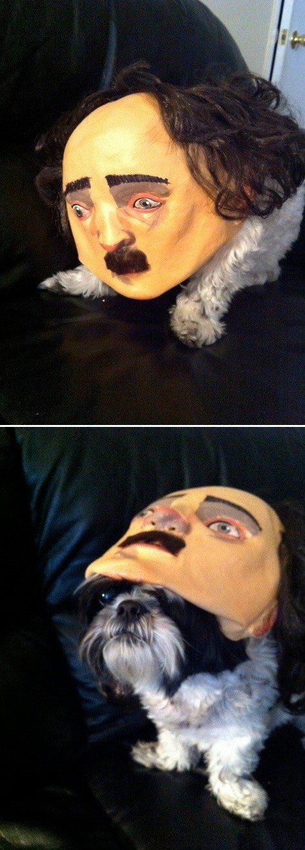 dogs edgar allen poe creepy mask - 7121585408