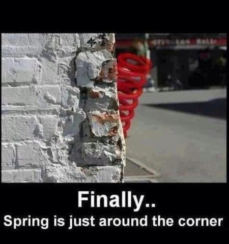 spring idiom literalism classic corner - 7121651968
