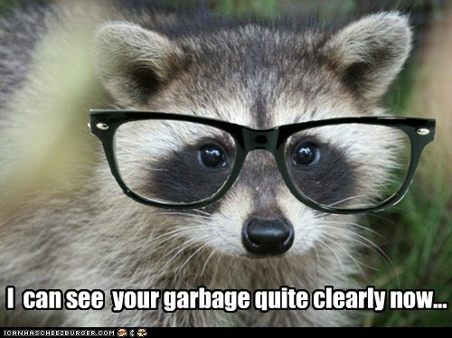 glasses,garbage,clear,raccoons