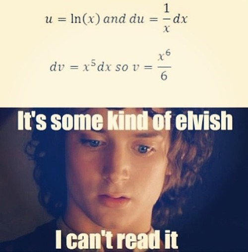 Lord of the Rings,calculus,elves,math,g rated,School of FAIL