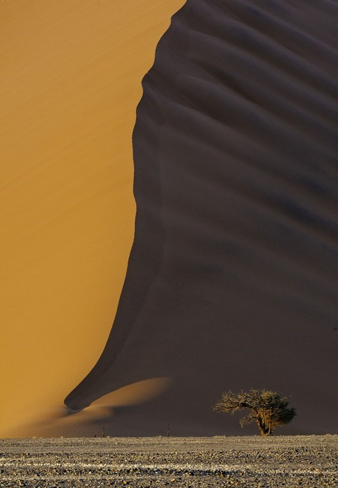 desert,dunes,not photoshopped,landscape