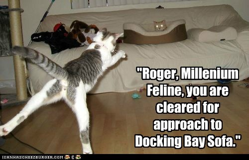 """Roger, Millenium Feline, you are cleared for approach to Docking Bay Sofa."""