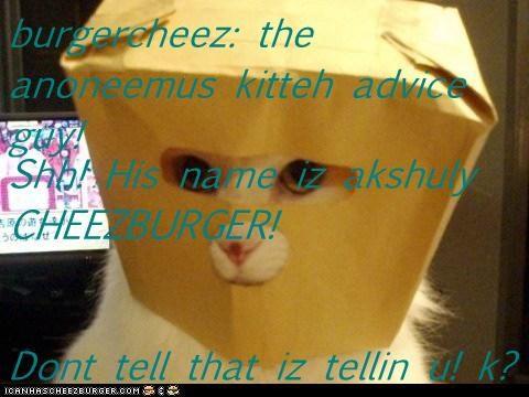 Cheezburger Image 7122921984
