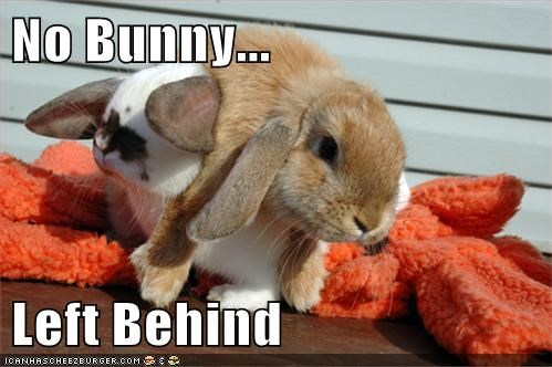 No Bunny... Left Behind