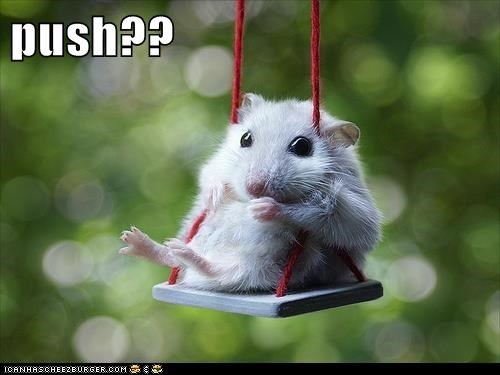 swing,push,squee