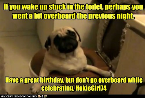 If you wake up stuck in the toilet, perhaps you went a bit overboard the previous night. Have a great birthday, but don't go overboard while celebrating, HokieGirl74