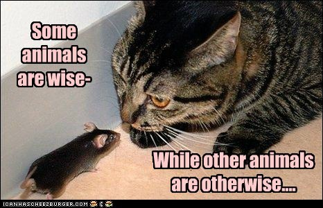 Some animals are wise- While other animals are otherwise....