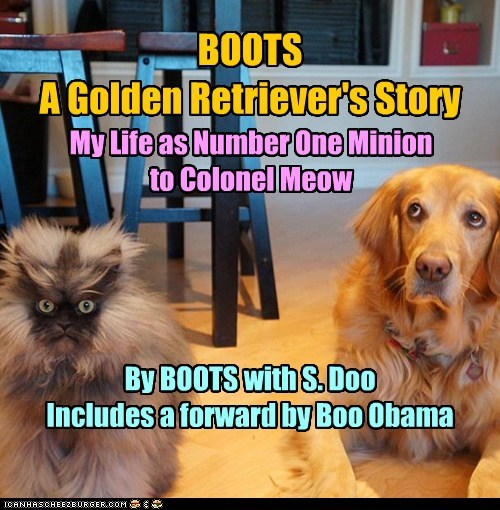 BOOTS A Golden Retriever's Story My Life as Number One Minion to Colonel Meow By BOOTS with S. Doo Includes a forward by Boo Obama