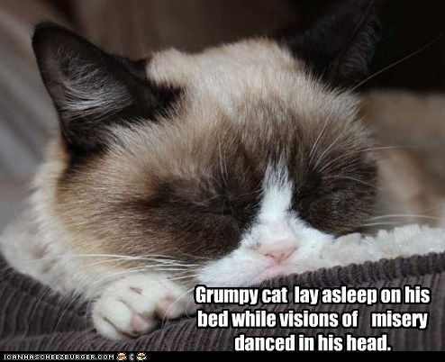 Grumpy cat lay asleep on his bed while visions of misery danced in his head.