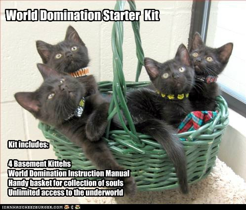 World Domination Starter Kit Kit includes: 4 Basement Kittehs World Domination Instruction Manual Handy basket for collection of souls Unlimited access to the underworld