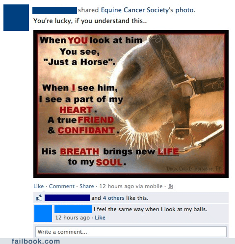 balls,mans-best-friend,horses,failbook