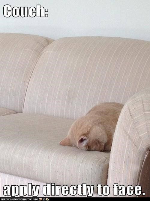 face couch Cats - 7129852416