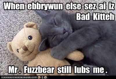kitten toys sleep Cats - 7129860608