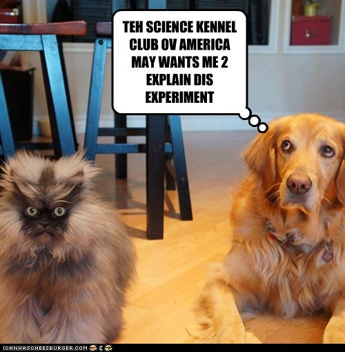TEH SCIENCE KENNEL CLUB OV AMERICA MAY WANTS ME 2 EXPLAIN DIS EXPERIMENT