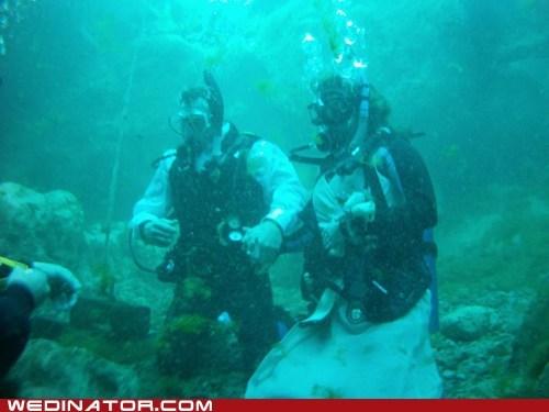 underwater scuba divers - 7130041088