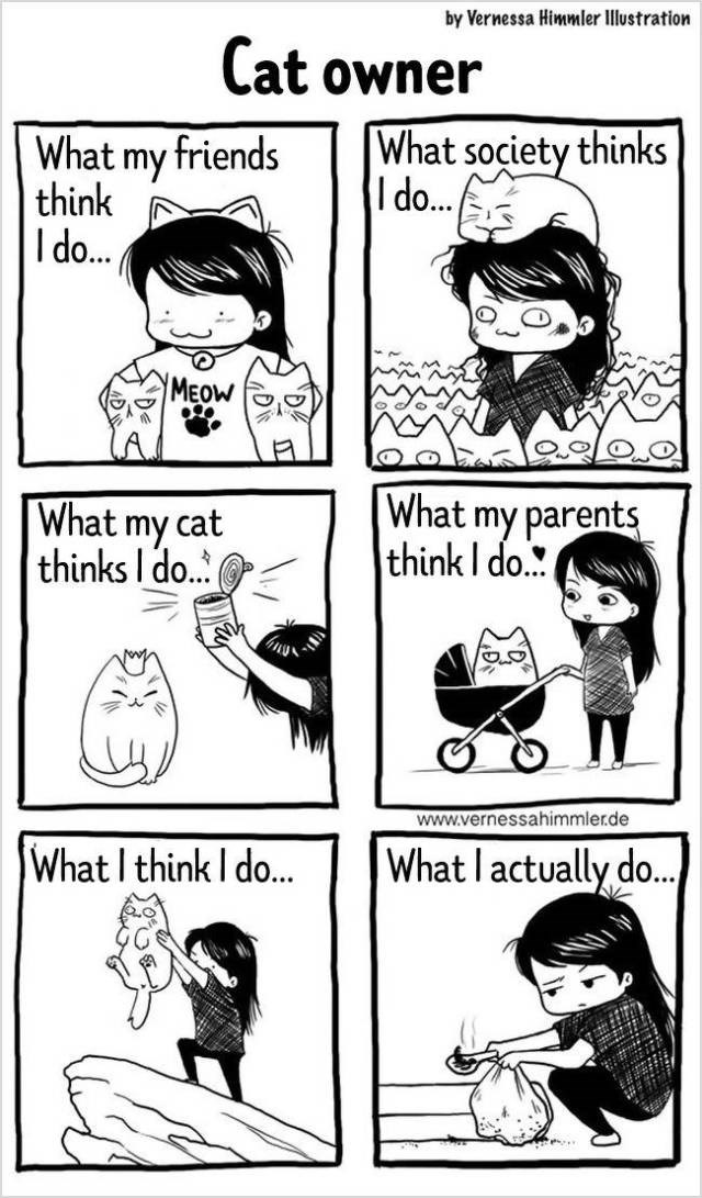 Vernessa Himmler webcomics about animals and having pets
