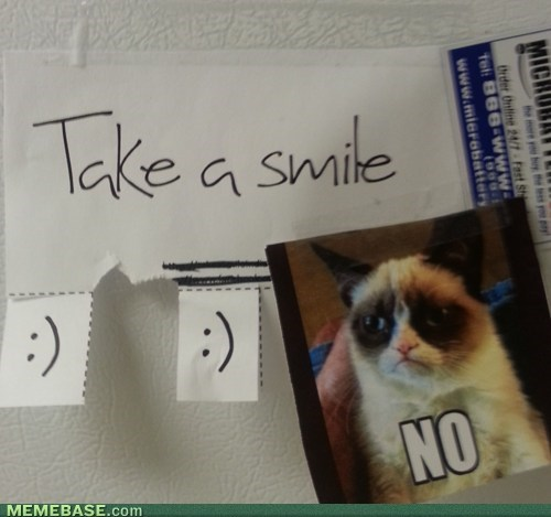 Grumpy Cat no smile