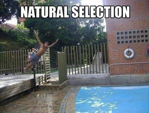 FAILS,natural selection,pools