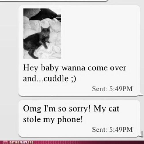 cat stolen cuddle dating fails g rated AutocoWrecks - 7130350592