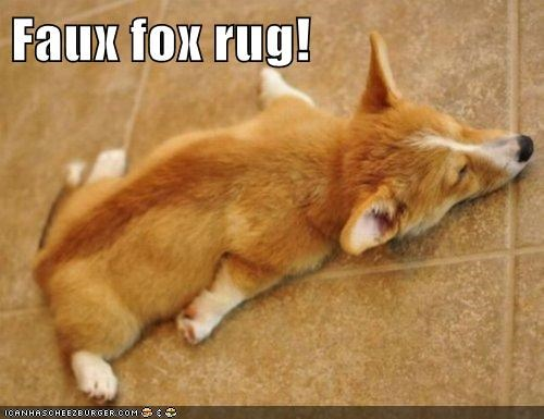 Faux fox rug!