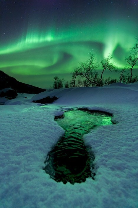 Norway aurora borealis snow winter pretty colors - 7130663168