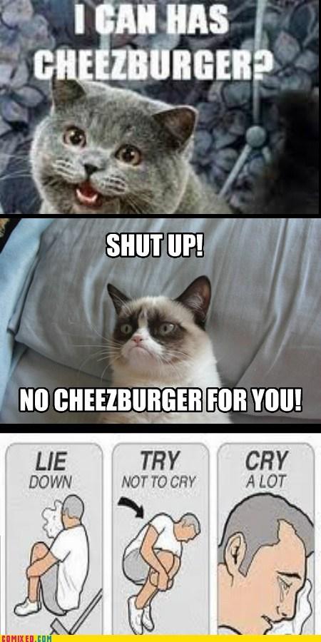 Cheezburger Image 7132086272