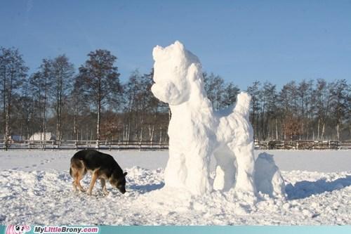 snowponies snow IRL - 7132296704
