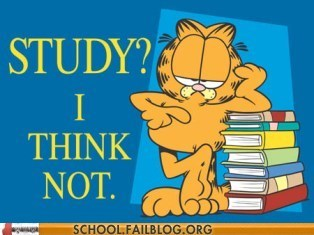 lazy garfield study - 7132566528