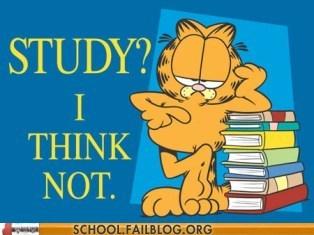 lazy garfield study - 7132566528