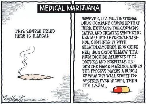pharma,drugs,marijuana,makes sense,after 12