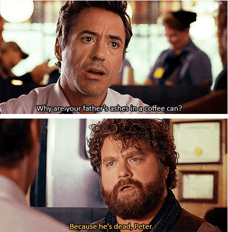 robert downey jr,Zach Galifianakis,due date