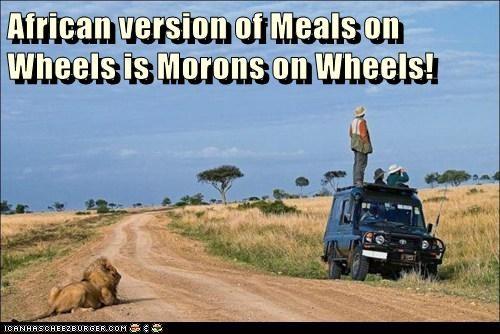 Cheezburger Image 7132987904