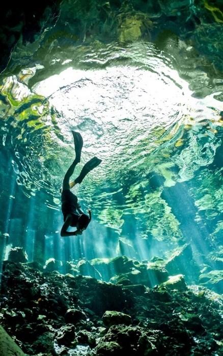 diving,scuba,ocean