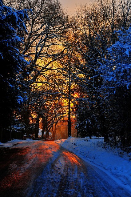 snow,sunrise,winter