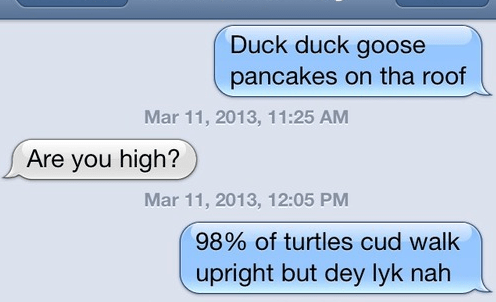 iPhones high turtles