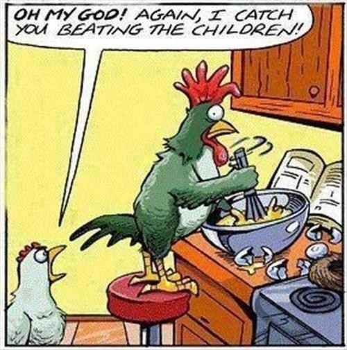roosters eggs comics chickens - 7135458304