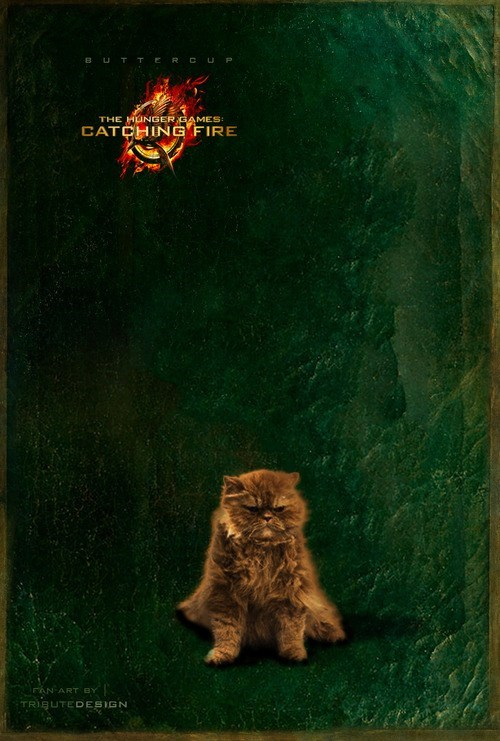 buttercup Fan Art hunger games catching fire portrait Cats