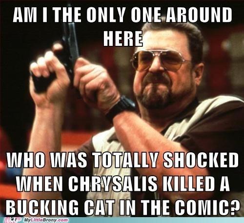 Memes chrysalis Cats - 7135654144
