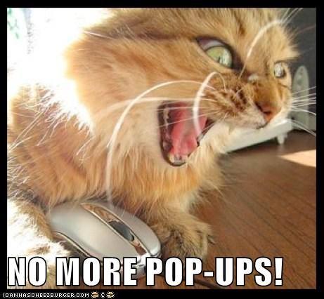 internet computer Cats - 7136167168