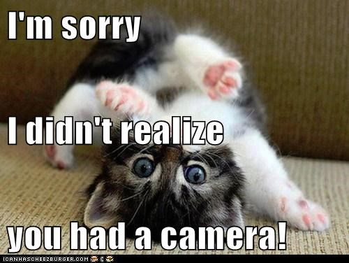 I'm sorry I didn't realize you had a camera!