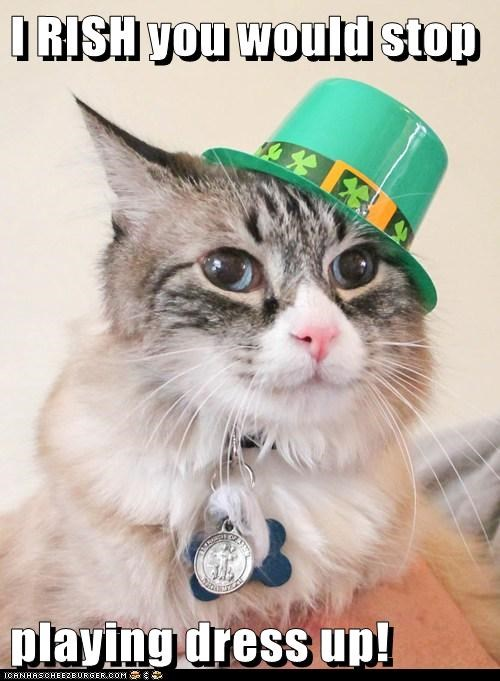 St Patrick's Day costume Cats - 7136780288