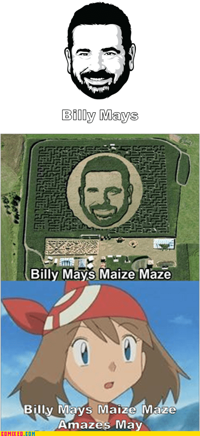 Pokémon Billy Mays yo dwag maze - 7138047744