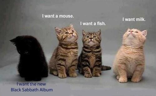 black sabbath ablums Cats - 7138140160